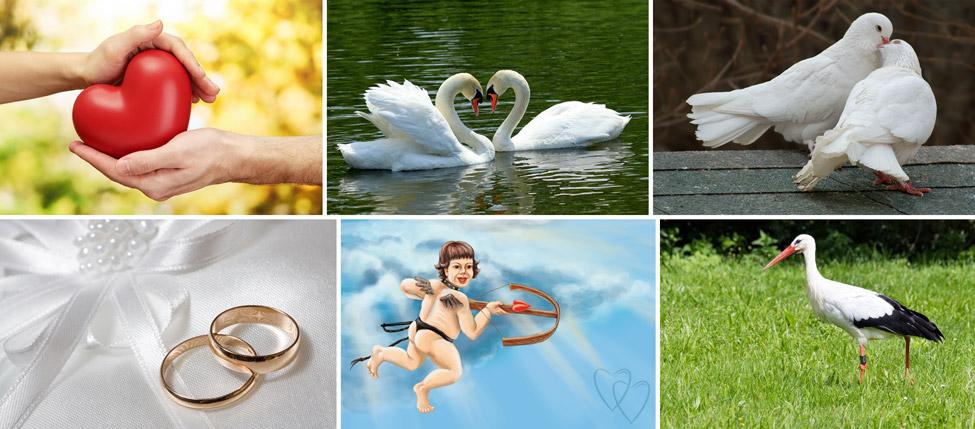 Какие существуют символы любви и верности в разных странах